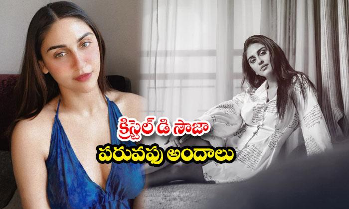 Actress krystle dsouza HD images-క్రిస్టెల్ డి సౌజా పరువపు అందాలు