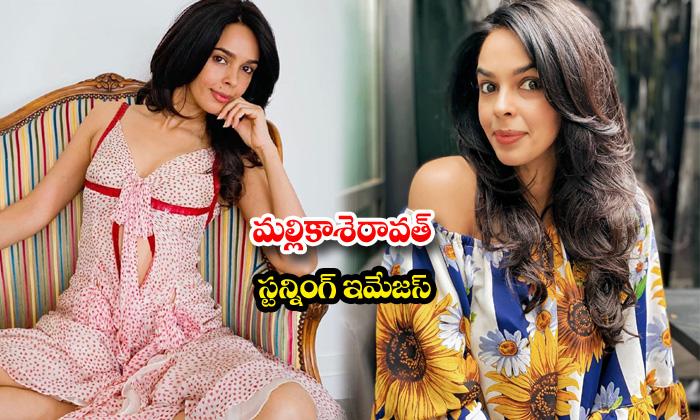 Actress mallika sherawat stunning images-మల్లికాశెరావత్ స్టన్నింగ్ ఇమేజస్