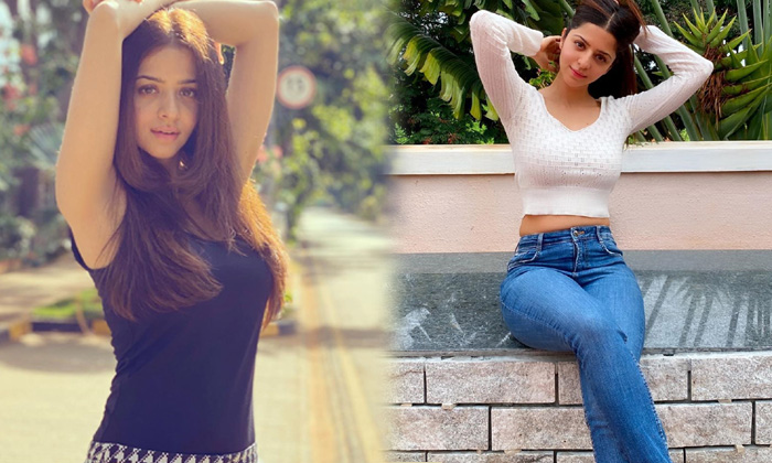 Actress Vedhika Awesome Poses-telugu Actress Hot Photos Actress Vedhika Awesome Poses - Telugu Images Clips Latest Movi High Resolution Photo
