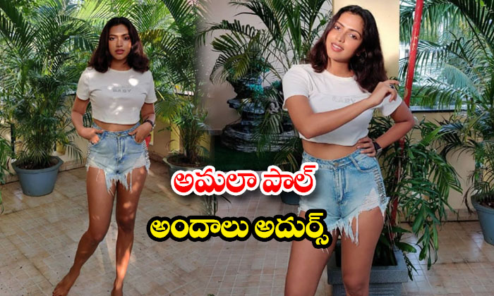 Amala Paul making heads turn with her stunning pics -అమలా పాల్ అందాలు అదుర్స్