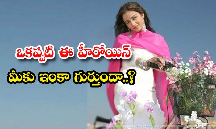 TeluguStop.com - Tollywood Heroine Dil Fame Neha Bamb