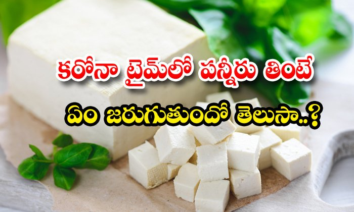 TeluguStop.com - Eat Paneer During Coronavirus Immunity Power Vitamin D