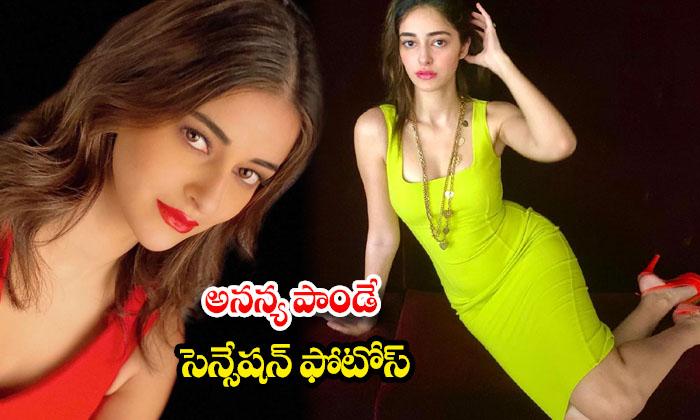 Gorgeous pics of Actress Ananya panday-అనన్య పాండే సెన్సేషన్ ఫొటోస్