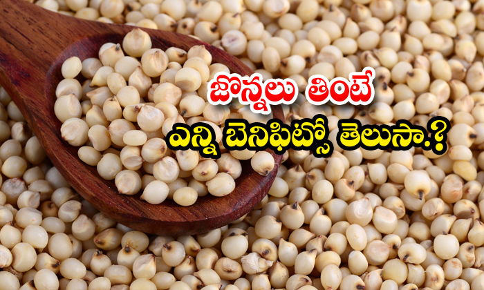 TeluguStop.com - What Are The Health Benefits Of Sorghum