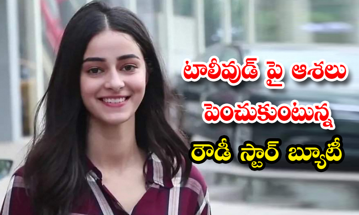 Ananya Pandey Interested Tollywood Offers