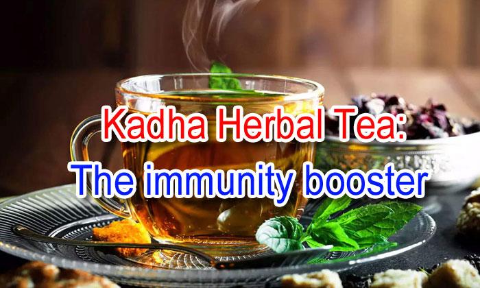 TeluguStop.com - Kadha Herbal Tea: The Immunity Booster