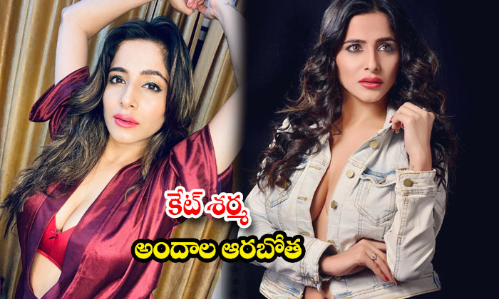 Kate sharma latest HD and spicy images-కేట్ శర్మ అందాల ఆరబోత