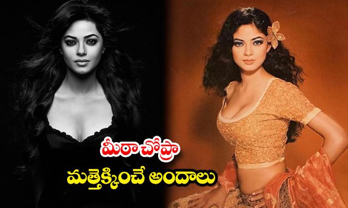 Meera Chopra hot and romantic images-మీరా చోప్రా మత్తెక్కించే అందాలు