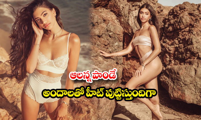 Model Alanna Panday setting social media on fire with her bikini images-అలన్న పాండేఅందాలతో హీట్ పుట