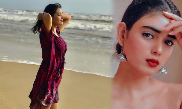 Neha Solanki Stunning Images-telugu Actress Hot Photos Neha Solanki Stunning Images - Telugu Actress Actressneha Clips High Resolution Photo