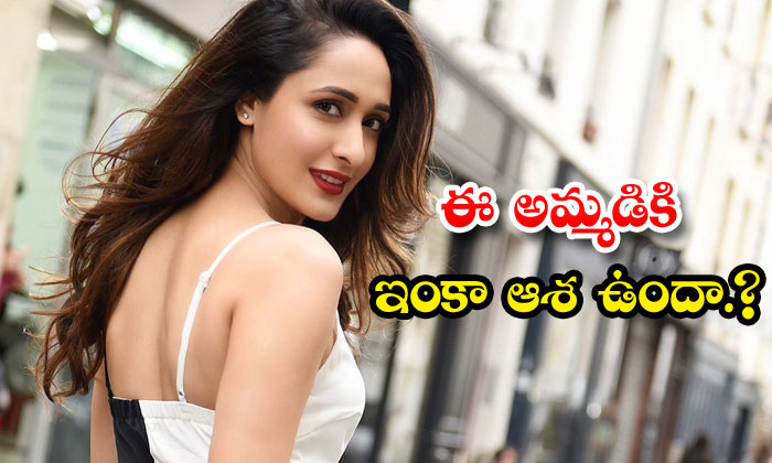 Pragya Jaiswal Photoshoot Movie Offers