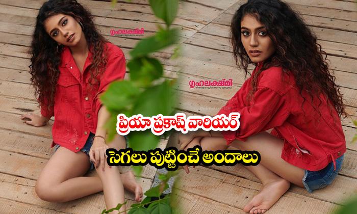 Priya prakash varrier romantic images-ప్రియా ప్రకాష్ వారియర్ సెగలు పుట్టించే అందాలు
