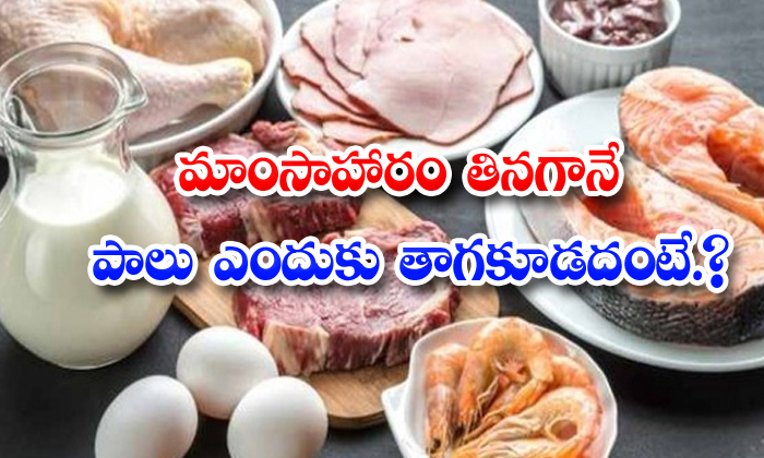 TeluguStop.com - Not Good To Drink Milk After Eating Non Veg Meals