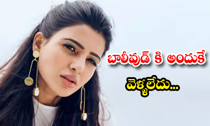 Samantha Not Interested In Bollywood