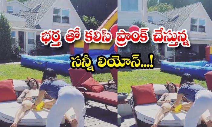 TeluguStop.com - Sunny Leone Pranks With Her Husband Viral