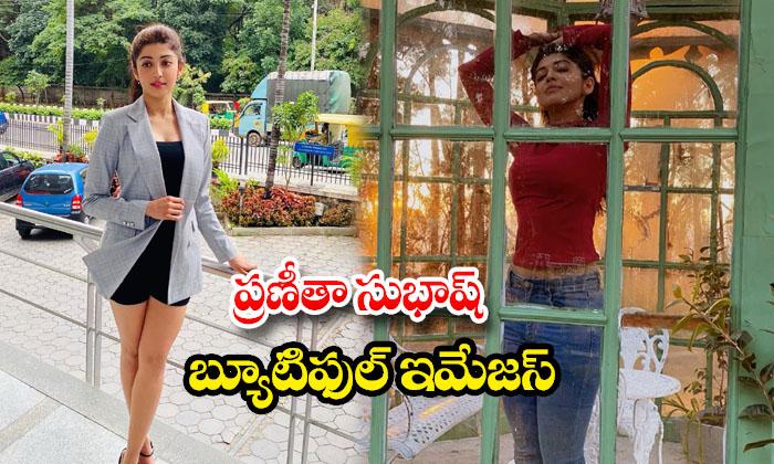 Tollywood actress Pranitha Subhash Ravishing Pictures-ప్రణీతా సుభాష్ బ్యూటిఫుల్ ఇమేజస్