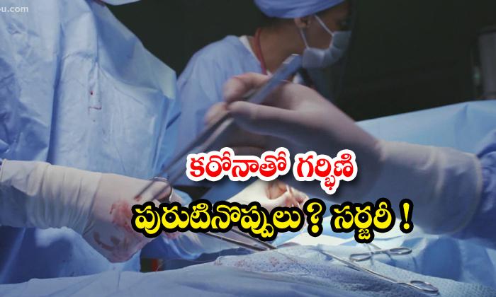 TeluguStop.com - Telangana Corona Peshent Delevary Ashaworker