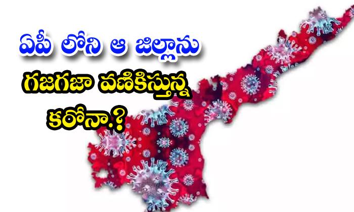 TeluguStop.com - More Corona Virus Cases In Ap Districts