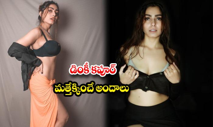 Actress dinky kapoor hot images-డింకీ కపూర్ మత్తెక్కించేఅందాలు