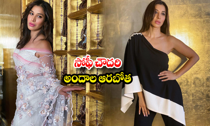 Actress sophie choudry trendy poses-సోఫీ చౌదరి అందాల ఆరబోత