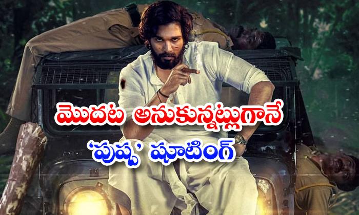 TeluguStop.com - Allu Arjun Pushpa Movie Shooting Update