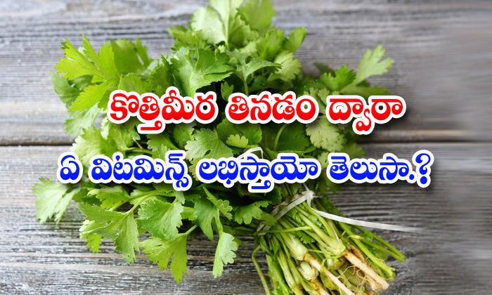 TeluguStop.com - Amazing Health Benefits Of Coriander Juice