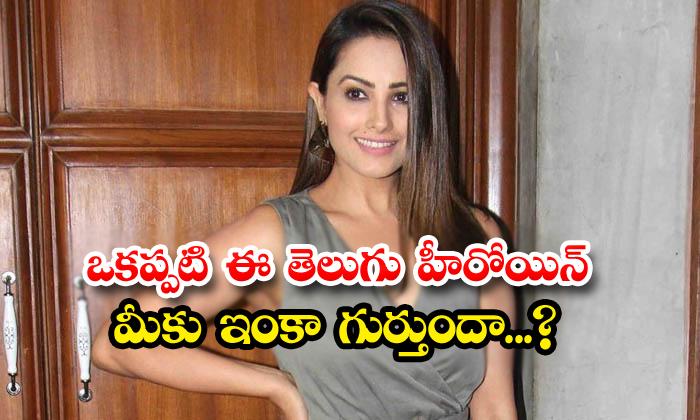 TeluguStop.com - Tollywood Yesteryear Heroine Anita Hassanandani Real Life News
