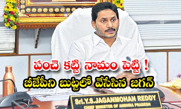 TeluguStop.com - Ap Cm Jagan Sensational On Ttd Declaration