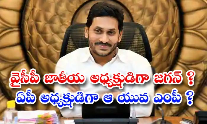 TeluguStop.com - Mithunreddy Is Ap Ysrcp President Jagan Take Desistion Soon