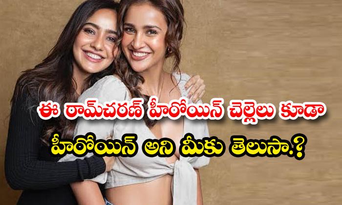 TeluguStop.com - Bollywood Heroine Neha Sharma Sister Shisha Sharma Cine Career
