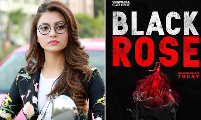 TeluguStop.com - First Look: Former Miss India In Black Rose'-Latest News English-Telugu Tollywood Photo Image