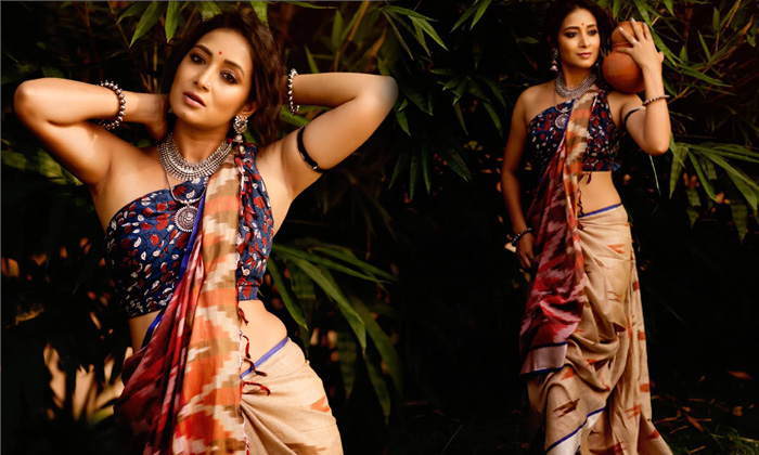 Gorgeous Pictures Of Bhanu Shree-telugu Actress Hot Photos Gorgeous Pictures Of Bhanu Shree - Telugu Actor Bigg Boss Fa High Resolution Photo