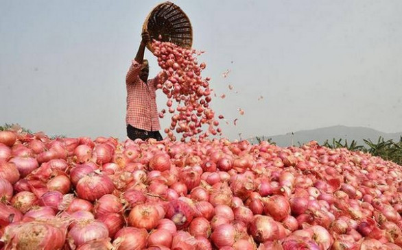 Government Bans Export Of Onions With Immediate Effect-General-English-Telugu Tollywood Photo Image