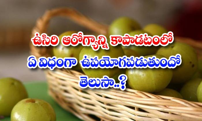 TeluguStop.com - Amazing Health Benefits Amla Hair Heart