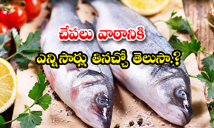 TeluguStop.com - How Many Times Eat Fish A Week
