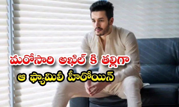TeluguStop.com - Amani Play Mother Role To Akhil Once Again