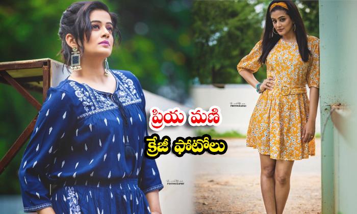 Heroine Priya Mani Latest Trendy Clicks-ప్రియ మణి క్రేజీ ఫోటోలు