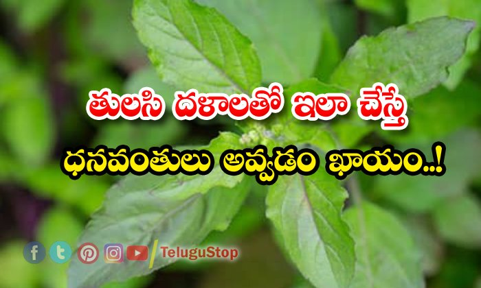 TeluguStop.com - Thulasi Pooja Will Make Rich People