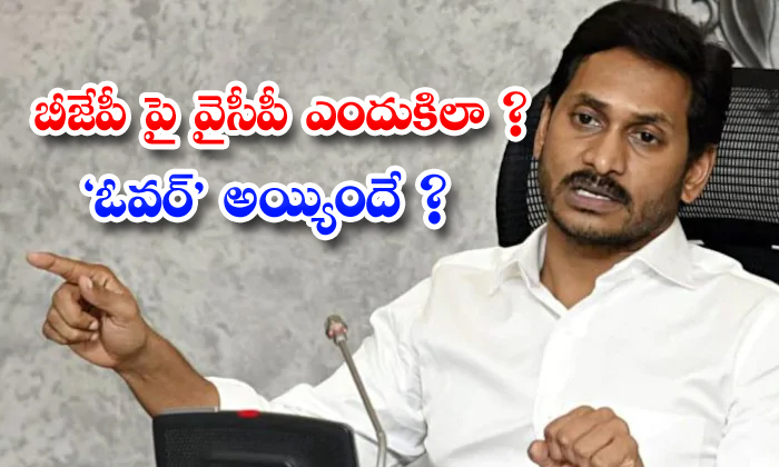 TeluguStop.com - Ysrcp Leaders Quation On Jagan Decisions About Bjp Friendship
