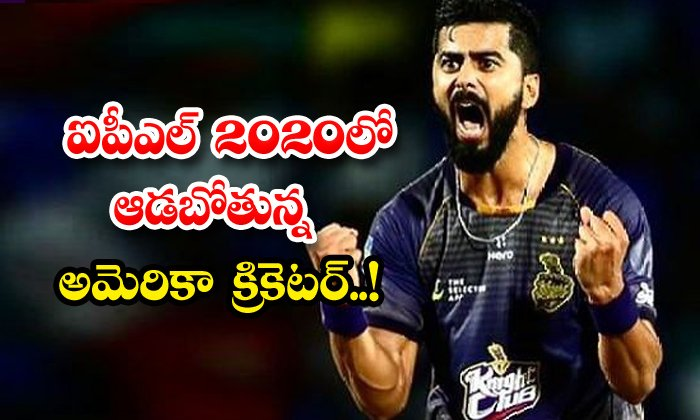 TeluguStop.com - American Cricketer Ali Khan Ipl2020 Kkr