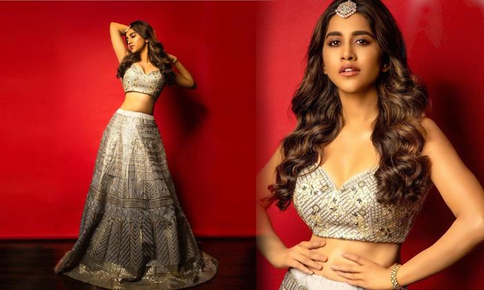 Mind Blowing Pictures Of Nabha Natesh-telugu Actress Hot Photos Mind Blowing Pictures Of Nabha Natesh - Telugu Age Chil High Resolution Photo