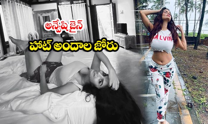 Model Anveshi Jain Stunning pictures-అన్వేషి జైన్ హాట్ అందాల జోరు