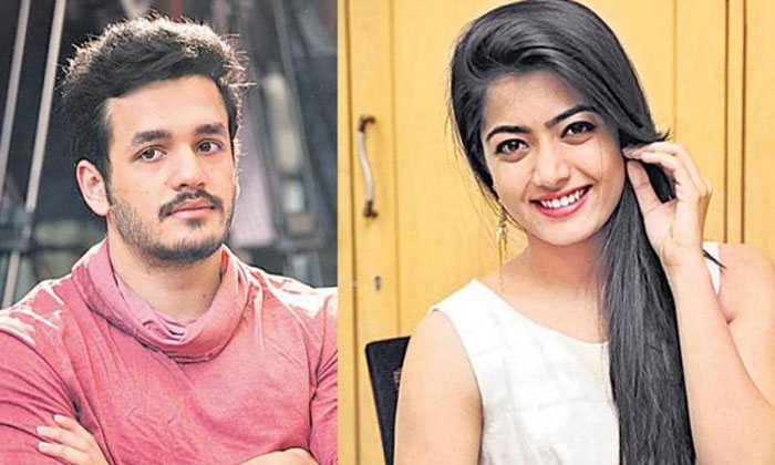 TeluguStop.com - Rashmika Mandanna For Akhil-Surender Reddy Film-Latest News English-Telugu Tollywood Photo Image