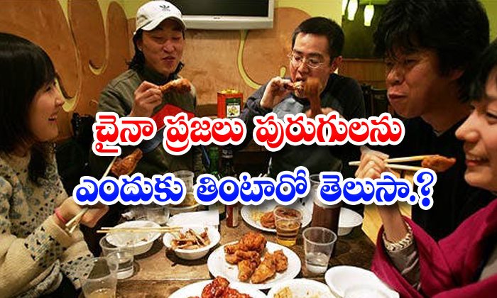 TeluguStop.com - Why Do Chinese People Eating Everything