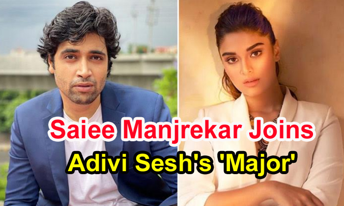TeluguStop.com - Saiee Manjrekar Joins Adivi Sesh's 'major'