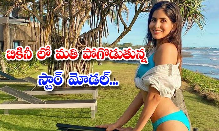 TeluguStop.com - Bollywood Model Sakshi Malik Raising Heat In Bikini