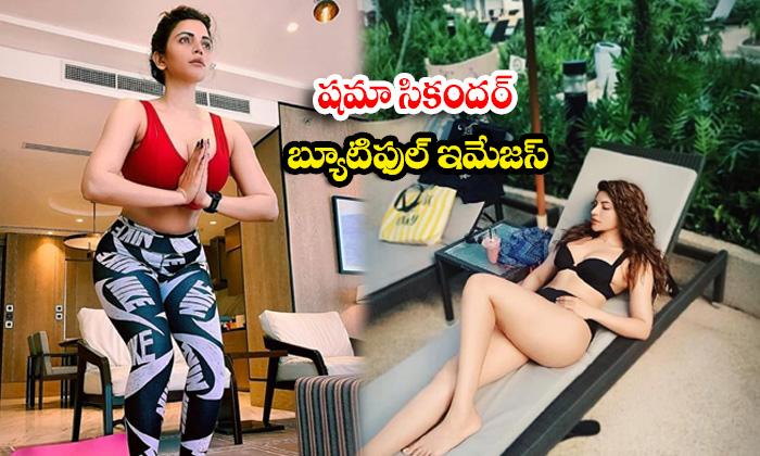 Shama Sikander spicy Images Will Make Your Heart Beat Faster-షమా సికందర్ బ్యూటిఫుల్ ఇమేజస్