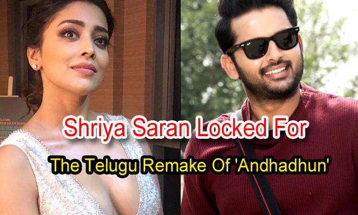 TeluguStop.com - Shriya Saran Locked For The Telugu Remake Of 'andhadhun'