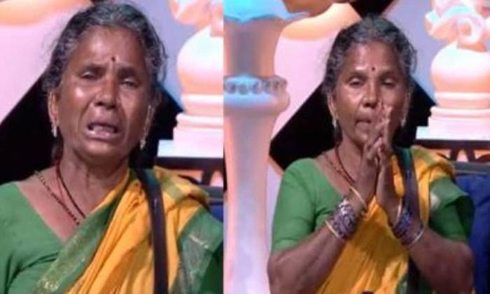 Telugu Bigg Boss, Bigg Boss 4 Telugu, Gangavva, Latest News, Nagarjuna, Social Media, Trolling-Movie