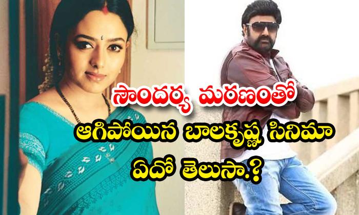 TeluguStop.com - Balakrishna Film Nartanashala Stoped Soundarya Death